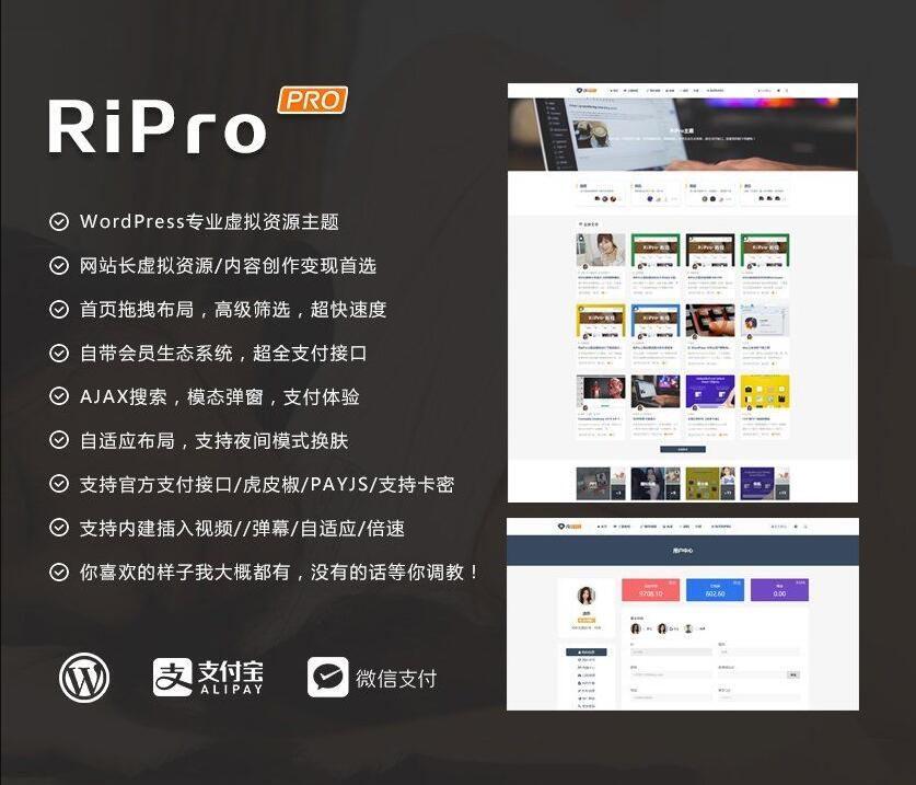 WordPress主题RiPro v8.6主题虚拟资源分享下载主题无限制版